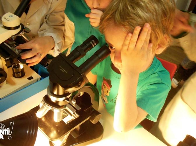 Los niños más pequeños también hacen ciencia