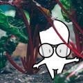 El suelo: calendario de siembra, abono y fertilizantes