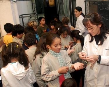 2011 :: Escuela Primaria de la UNL . Sala Babini