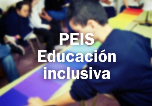 PEIS: Educación inclusiva